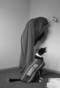 Black and white image of a dog wearing a service dog coat, blanket draped figure in the background